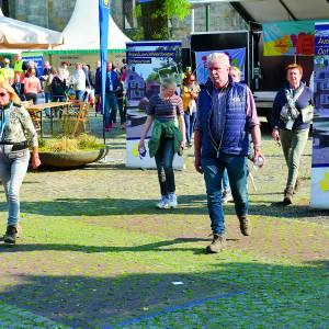 Na vijf jaar loopt Avond4daagse Ootmarsum als een trein