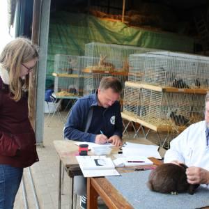 Succesvolle jongdierendag kleindierensportvereniging Noordoost-Twente