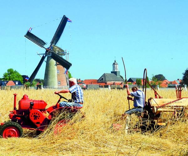 Historie van het oogsten te zien tijdens nostalgische oogstdag Ootmarsum